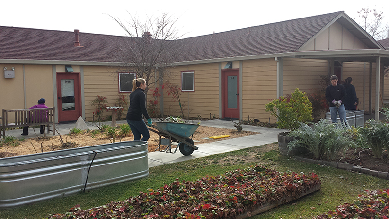 WBE helped clean up and add new plants for Homeward Bound of Marin