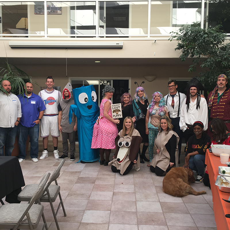 WBE annual Halloween costume contest participants!