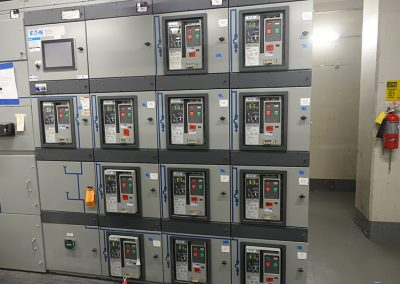 Electrical Riser System